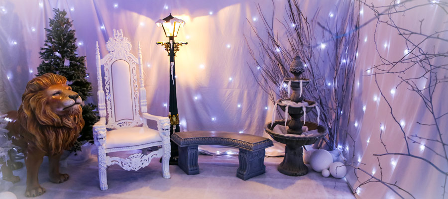 Narnia Themed Party