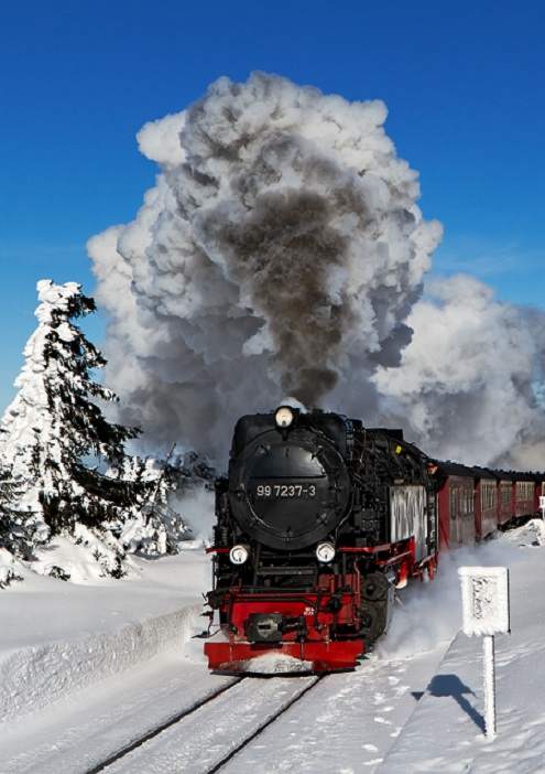 Polar Express Christmas Teambuilding
